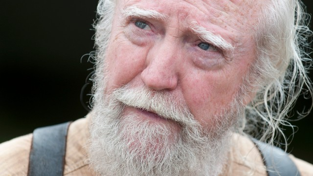 http://davidmschroeder.files.wordpress.com/2013/12/hershel.jpg